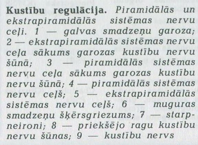 Kustibu regulacija